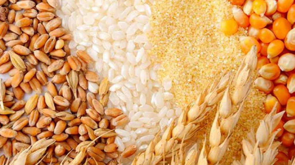 Import of Cereals from Russia and Kazakhstan,  Импорт зерновых из России и Казахстана ,