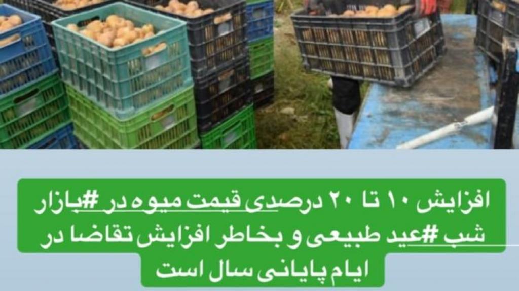 افزایش قیمت میوه و صیفیجات