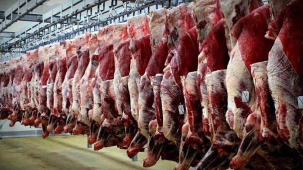 آمادگی واردات گوشت